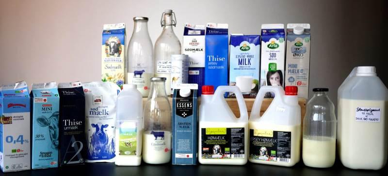 Blindsmagning af mælk. foto:Rasmus Holmgård
